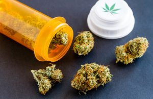 whats-next-for-florida-medical-marijuana-patients