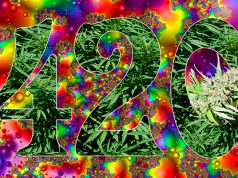 420-a-story-in-videos