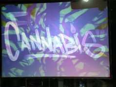 cannabis-takes-the-stage-in-new-york-city