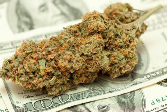 putting-your-money-where-the-marijuana-is