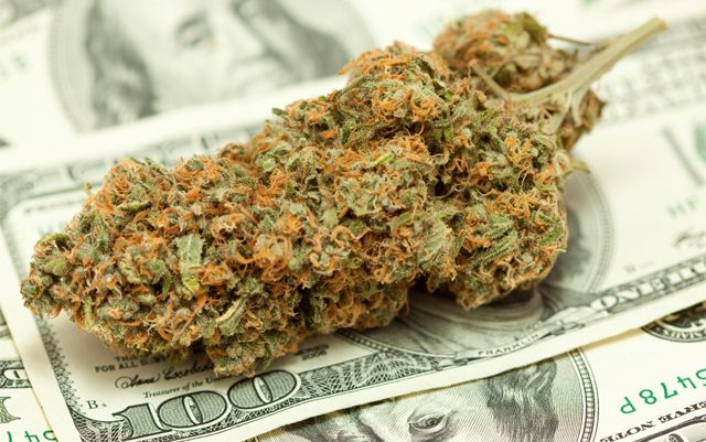 putting-your-money-where-the-marijuana-is