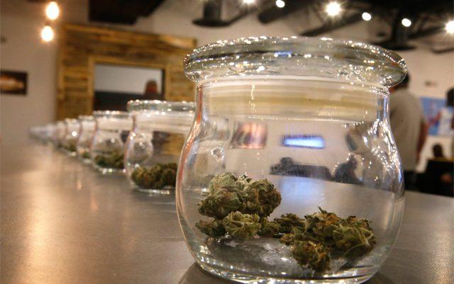 canadas-completely-predictable-marijuana-shortage