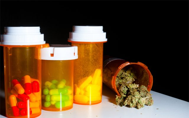 doctors-in-colorado-will-be-able-to-recommend-marijuana-in-place-of-opioids