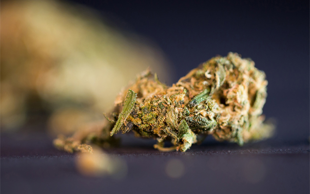 federally-funded-study-finds-cannabis-legalization-doesnt-negatively-impact-other-states