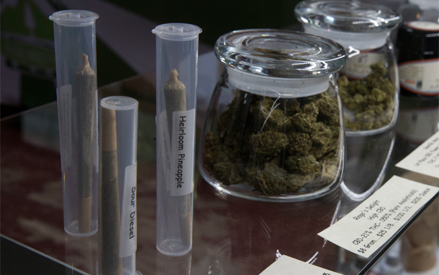 Illicit Cannabis Companies Find Struggles, Success in Going Legit