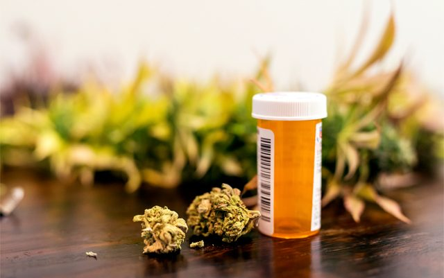 is-cannabis-the-best-medicine-for-pain
