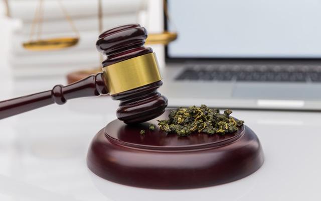 Cannabis-Law - Manshoory Law