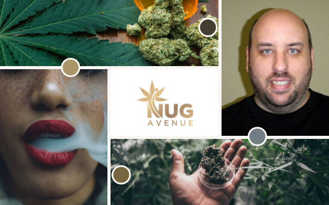 Nug Avenue Photo Collage
