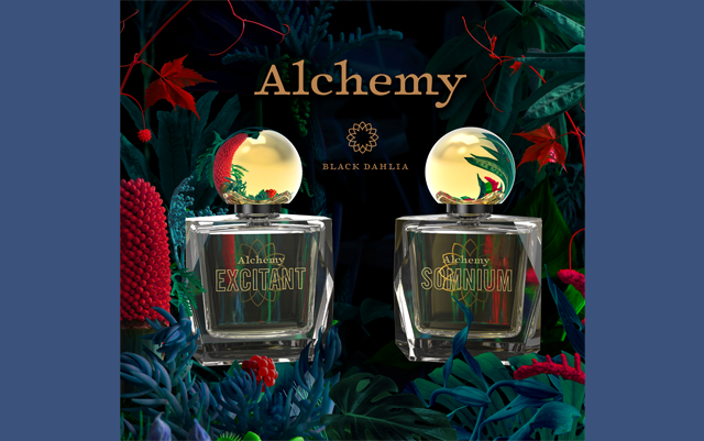 Alchemy Black Dahlia